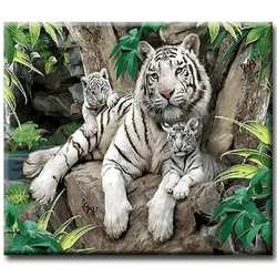 Diamanttavla White Tigers 50x70