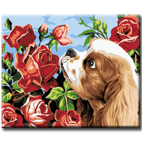 Paint By Numbers Dog And Roses 40x50