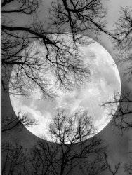 Diamanttavla Black And White Moon 40x50