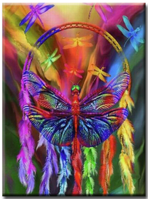 Diamanttavla Color Dragonfly Dreamcatcher 40x50