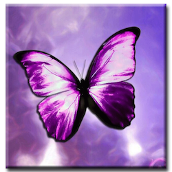 Diamanttavla Purple Butterfly 30x30