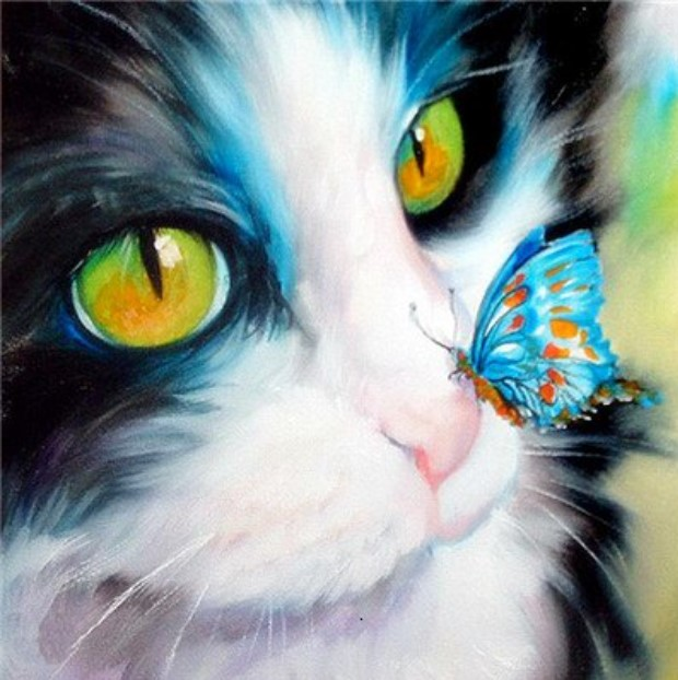 Diamanttavla Cat And Butterfly 40x40