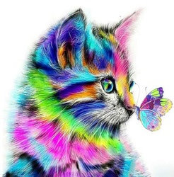 Diamanttavla Colorful Cat And Butterfly 40x50