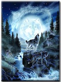 Diamanttavla (R) Forest Wolves 50x70