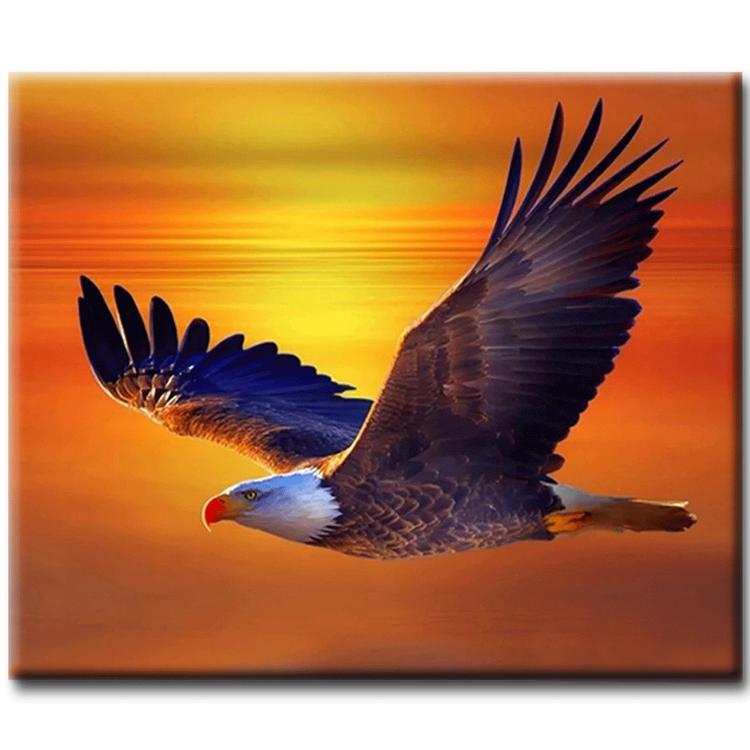 Diamanttavla (R) Sunset Eagle 40x50