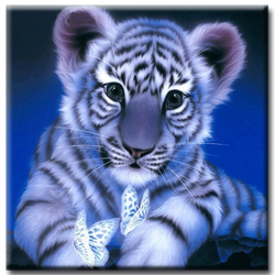 Diamanttavla  White Tiger Butterflies 40x40