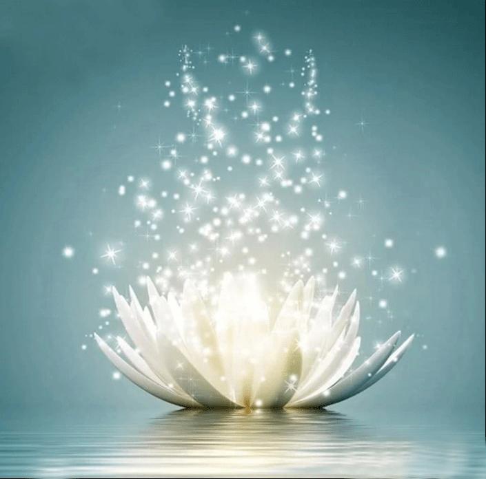 Diamanttavla Sparkling Lotus 40x40