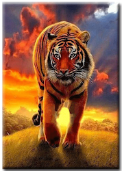 Diamanttavla Tiger Fire Sky 50x70