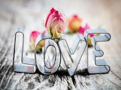 Diamanttavla Love Roses 40x50