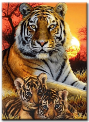 Diamanttavla Sunset Tigers 50x70