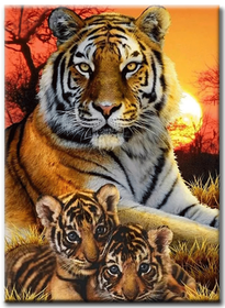 Diamanttavla Sunset Tigers 50x70