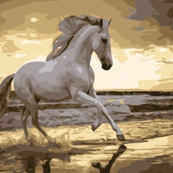 Paint By Numbers Ocean Wild Horse 40x50