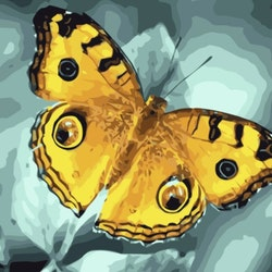 Paint By Numbers Yellow Butterfly 40x50