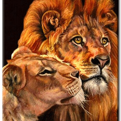 Diamanttavla (R) Lions 40x50