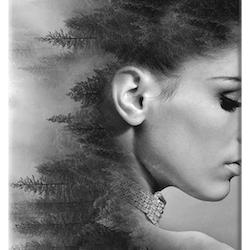 Diamanttavla Beauty Forest 50x70