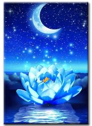 Diamanttavla (R) Moon And Lotus 40x50