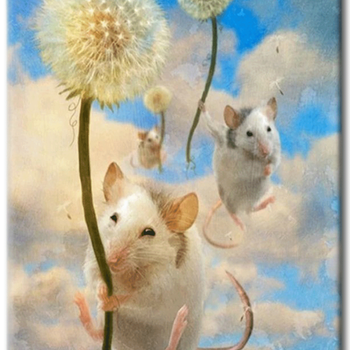 Diamanttavla Dandelion Mouse 30x40 - Leveranstid 1-3 Dagar