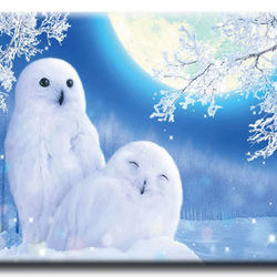 Diamanttavla Moonlight Couple Owls 40x50