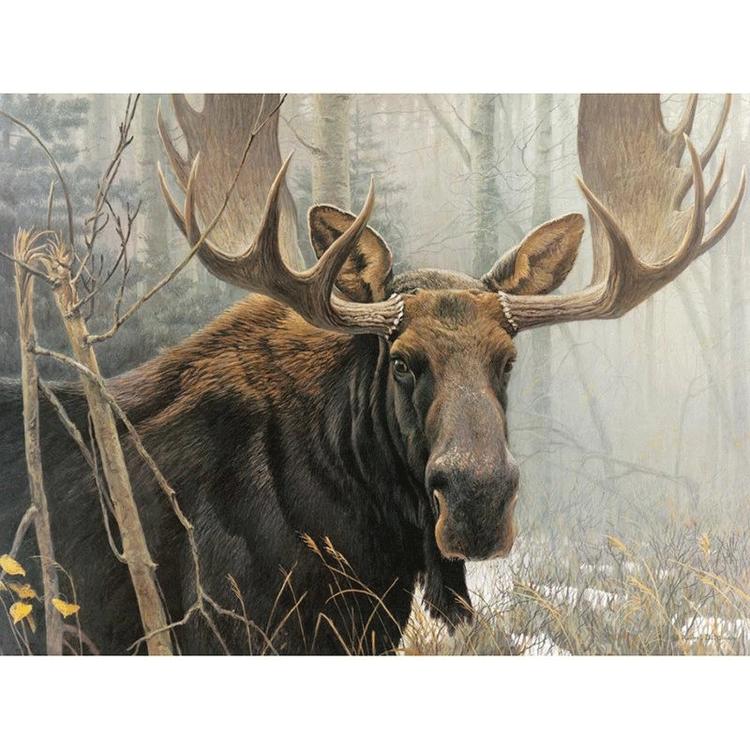 Diamanttavla Moose 40x50