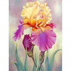 Diamanttavla Iris Flower 30x40