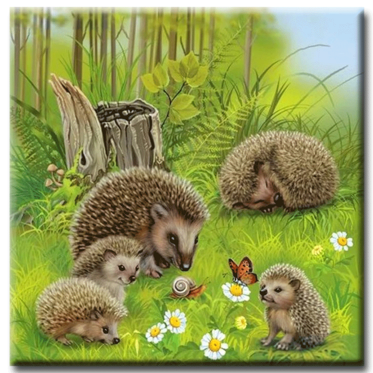 Diamanttavla Hedgehog Family 80x80 - Leveranstid 1-3 Dagar