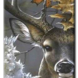 Diamanttavla Deer In Wood 50x70