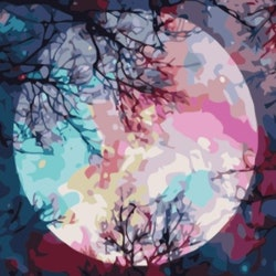 Paint By Numbers Color Moon 50x70