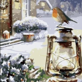 Paint By Numbers Vinterfågel På Lykta 50x70
