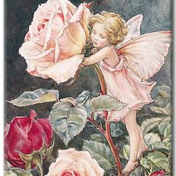 Diamanttavla Little Rose Fairy 40x50