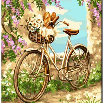 Paint by Numbers Picnic Bike 40x50