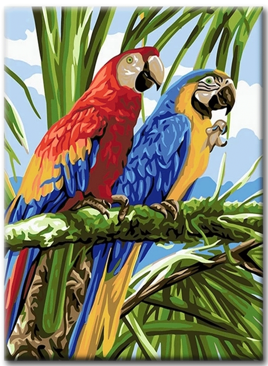 Paint By Numbers Parrots 40x50