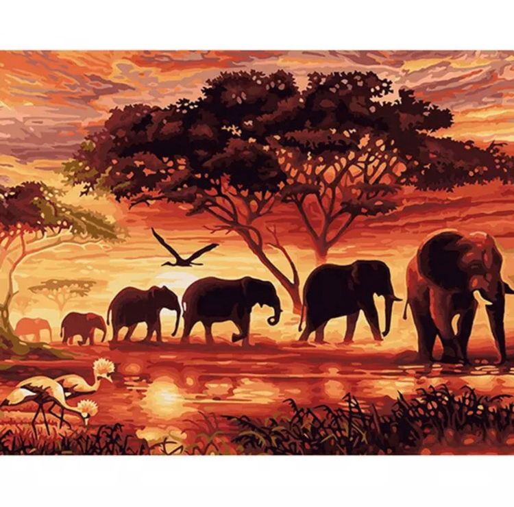 Paint By Numbers Elephants 40x50