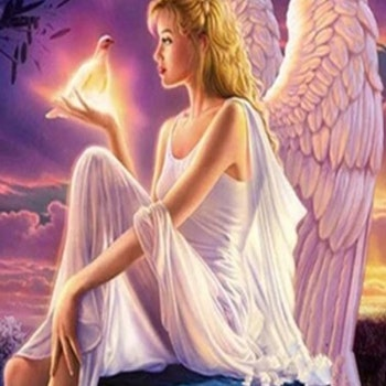 Diamanttavla Angel And Pigeon 50x70
