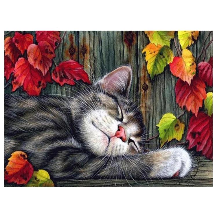 Diamanttavla Sleeping Cat 40x50