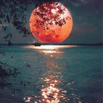 Diamanttavla Red Moon 50x60