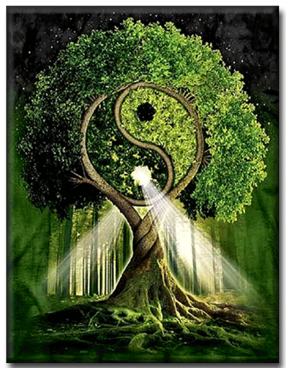 Diamanttavla Tai Chi Tree 40x50