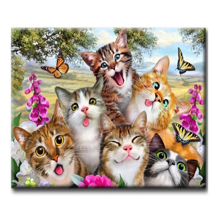 Diamanttavla Funny Cats 40x50