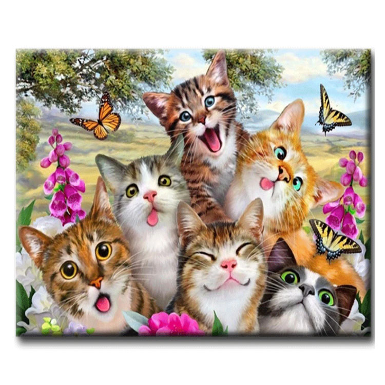 Diamanttavla Funny Cats 50x70