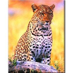 Diamanttavla Ståtlig Leopard 40x50
