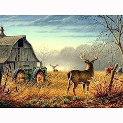 Diamanttavla Deers & Tractor 50x70