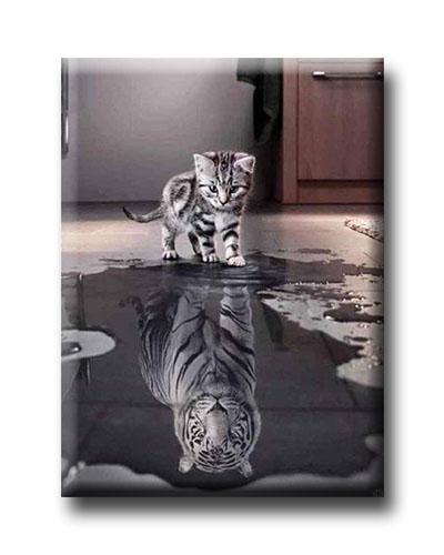 Diamanttavla (R) Katt Med Tigerspegelbild 40x50