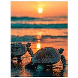 Diamanttavla Turtles Sunset 50x60