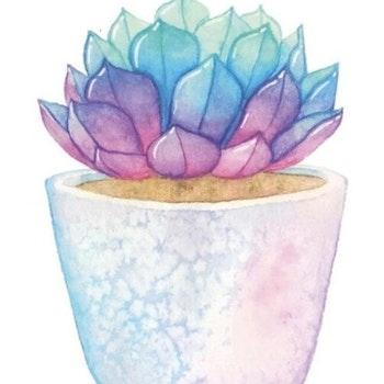 Diamanttavla Succulent Color 30x30