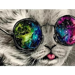 Diamanttavla Cat Glalaxy Glasses 40x50