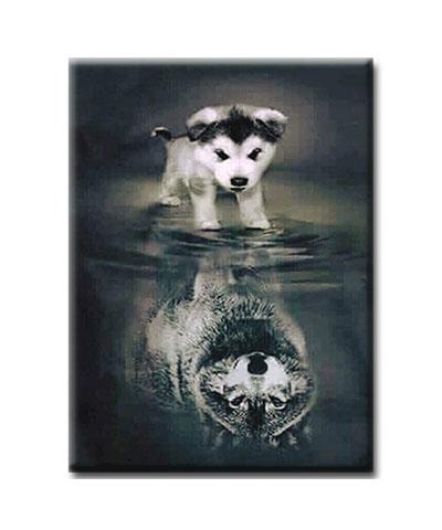 Diamanttavla Hund Med Vargspegelbild 40x50