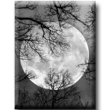 Diamanttavla Full Moon 50x60