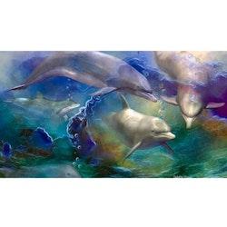 Diamanttavla Dolphins Art 60x90