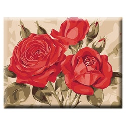 Paint By Numbers Beautiful Red Roses 40x50