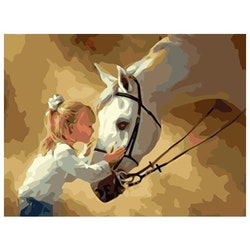 Paint By Numbers Girl And Horse 40x50