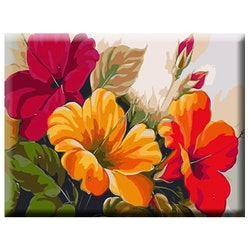 Paint By Numbers Exotic Flowers 40x50